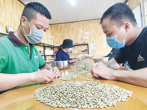 """""""Dị nhân cà phê"""" Đăk Lăk chỉ làm cà phê chất lượng cao và cà phê đặc sản - Ảnh 1."""