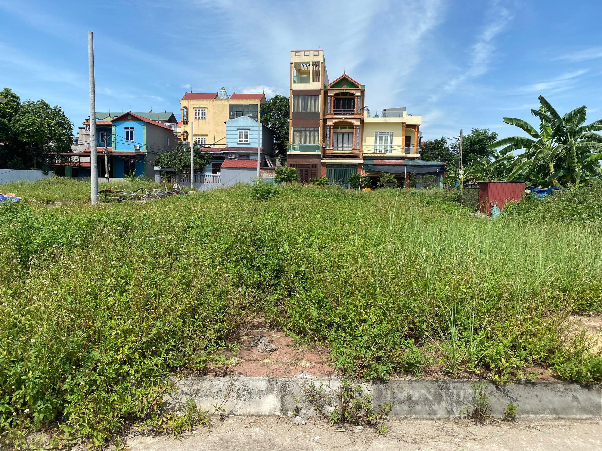 Nhà đầu tư đánh liều mua đất online giữa mùa dịch - Ảnh 5.