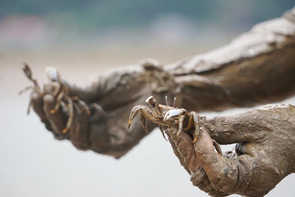 Khều là con đặc sản gì mà cứ chớm thu, người dân Hậu Lộc lại rủ nhau đi săn ở ven rừng ngập mặn? - Ảnh 5.