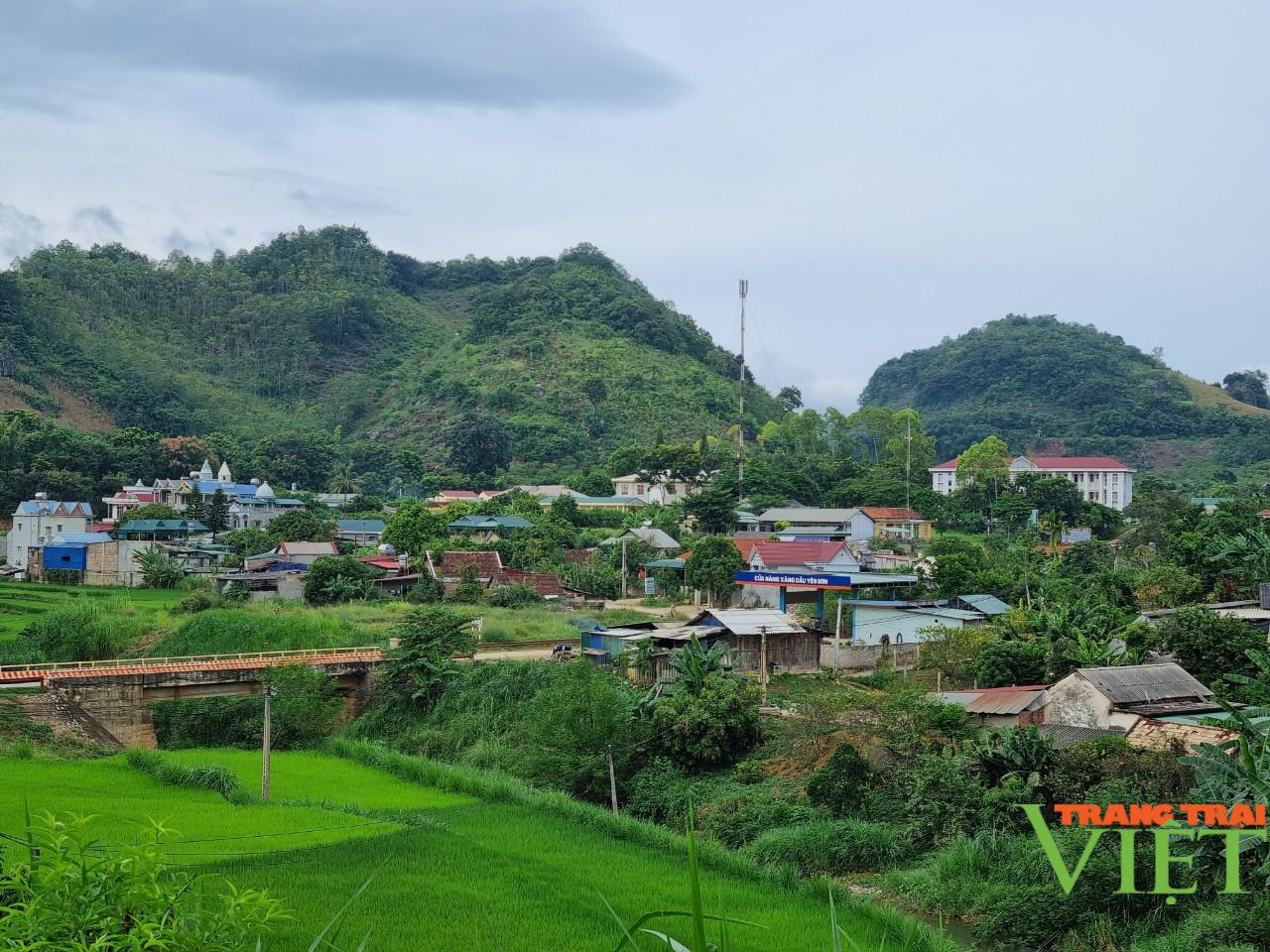 Yên Sơn nâng cao thu nhập cho người dân - Ảnh 2.