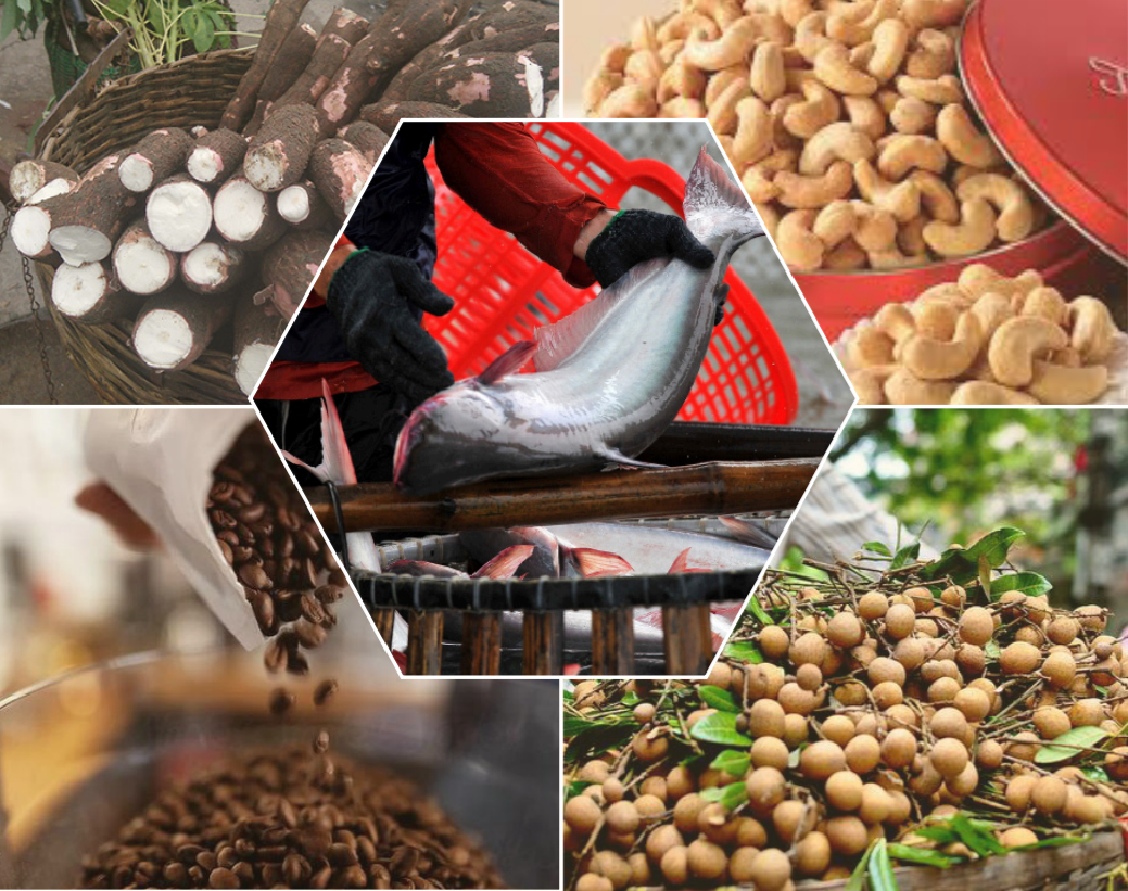 Thị trường nông, lâm, thủy sản trong nước đầu tháng 9/2021 có gì đáng chú ý? - Ảnh 1.