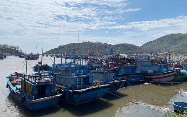 Quảng Ngãi: Dừng hoạt động tất cả các cảng, bến cá để chống dịch Covid-19