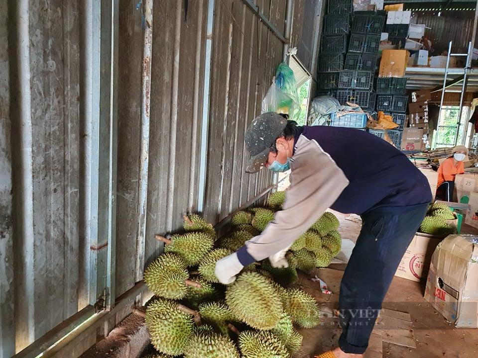 Đắk Lắk: Huyện Krông Búk cho phép thu mua nông sản trở lại vào ngày mai - Ảnh 2.
