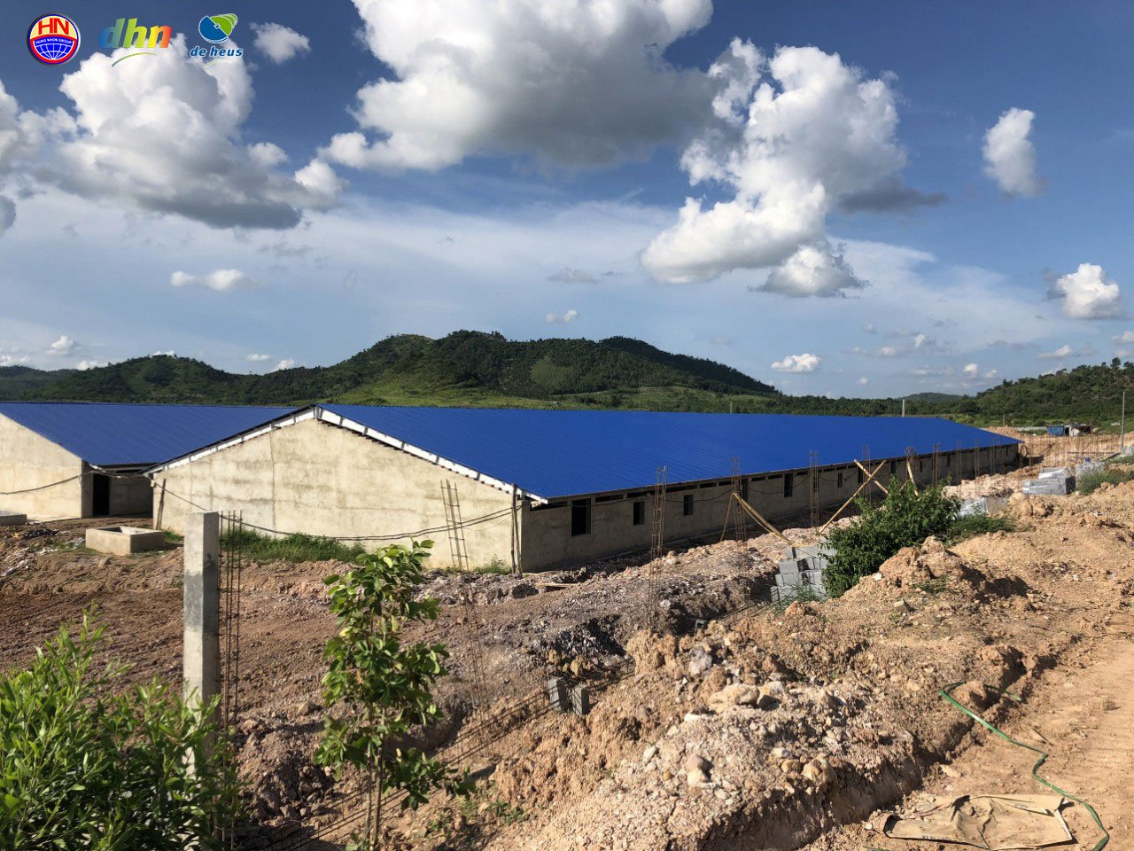 Đắk Lắk chuẩn bị có trại heo cụ kị 10.000 con, lớn nhất Tây Nguyên - Ảnh 6.