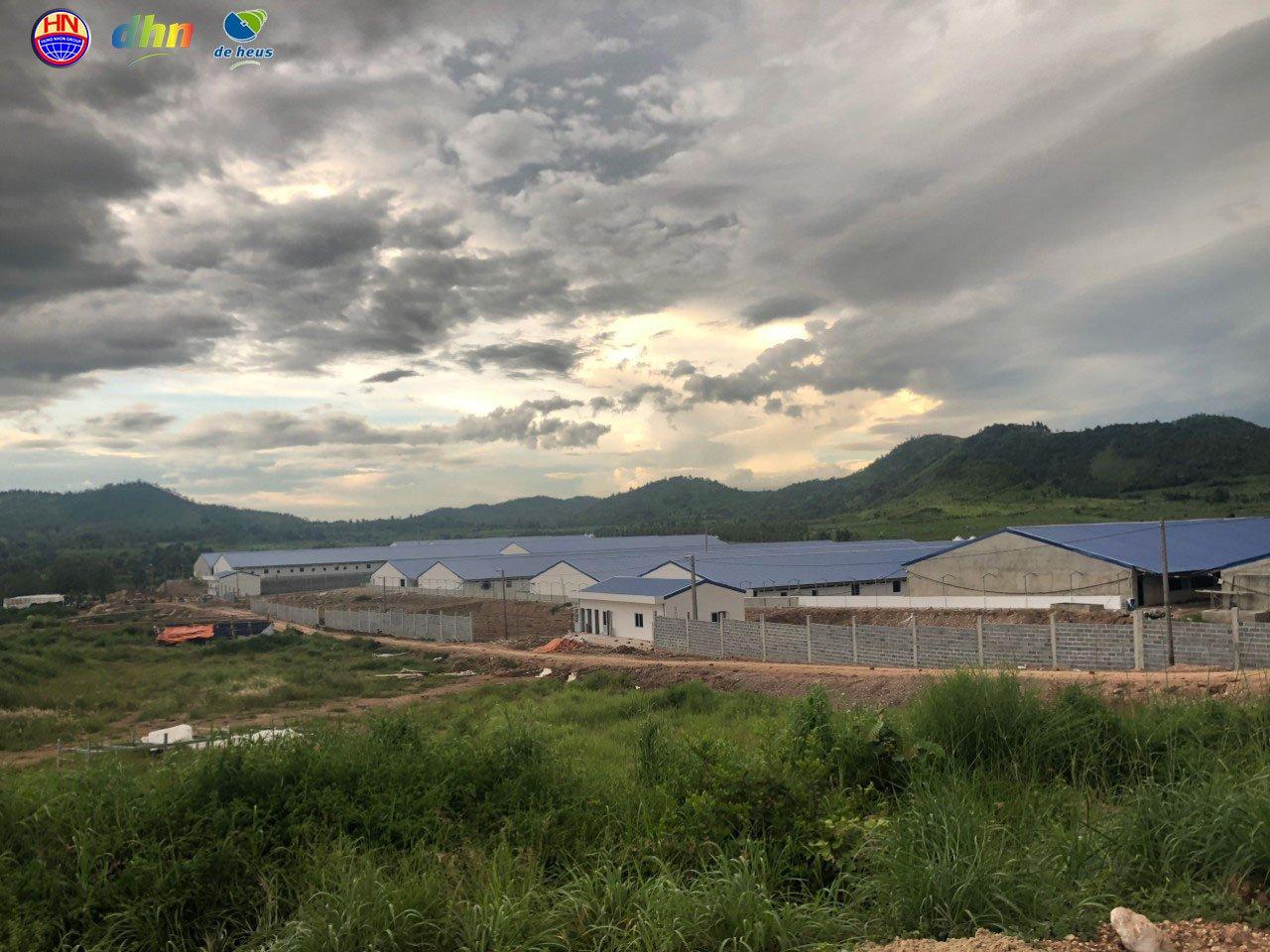 Đắk Lắk chuẩn bị có trại heo cụ kị 10.000 con, lớn nhất Tây Nguyên - Ảnh 1.