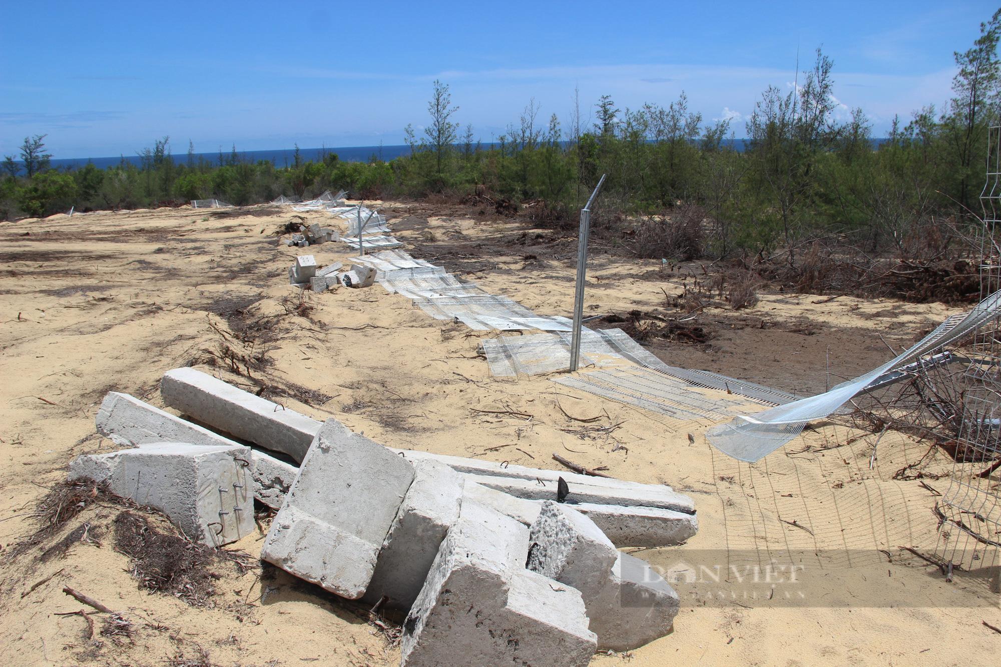 """Dự án Nhà máy điện mặt trời """"tàn sát"""" 5,2ha rừng do nhầm lẫn: Bất ngờ báo cáo của UBND huyện Phù Mỹ gửi tỉnh! - Ảnh 2."""