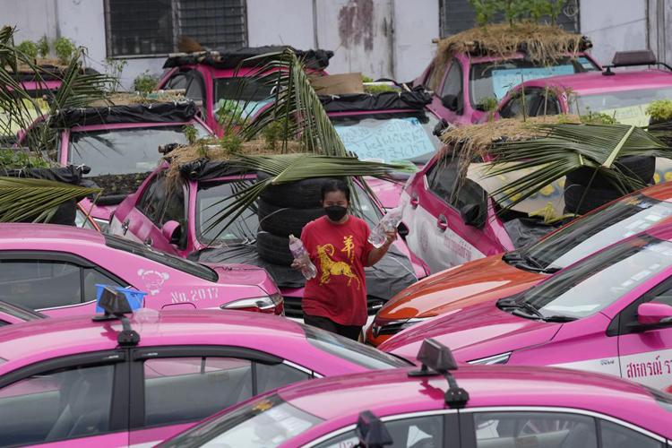 """Biến """"nghĩa địa"""" taxi thành vườn rau độc đáo ở Thái Lan - Ảnh 3."""