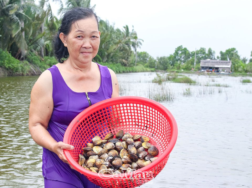 Cà Mau: Con vọp là con gì mà dân thả nuôi trong vuông cùng với tôm sú, cua biển, bắt bán 60.000 đồng/kg? - Ảnh 2.