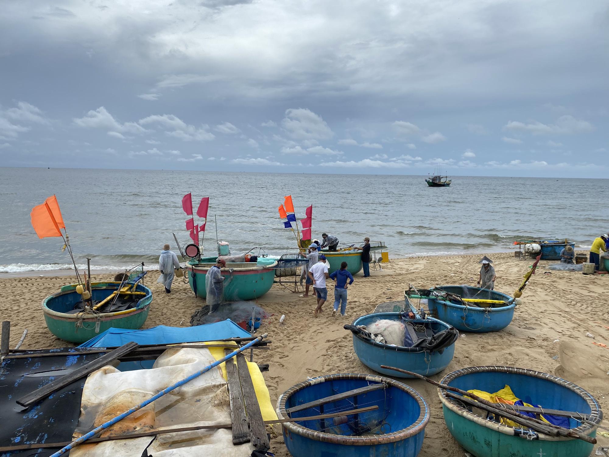 """Ngư dân Phước Hải vui sướng trong ngày đầu """"mở biển"""" ra khơi - Ảnh 2."""