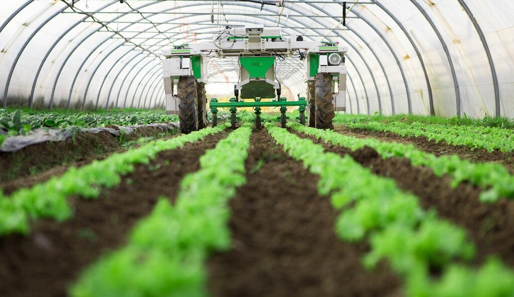 Các nhà nghiên cứu đưa ra đánh giá về nông nghiệp bền vững - Ảnh 1.