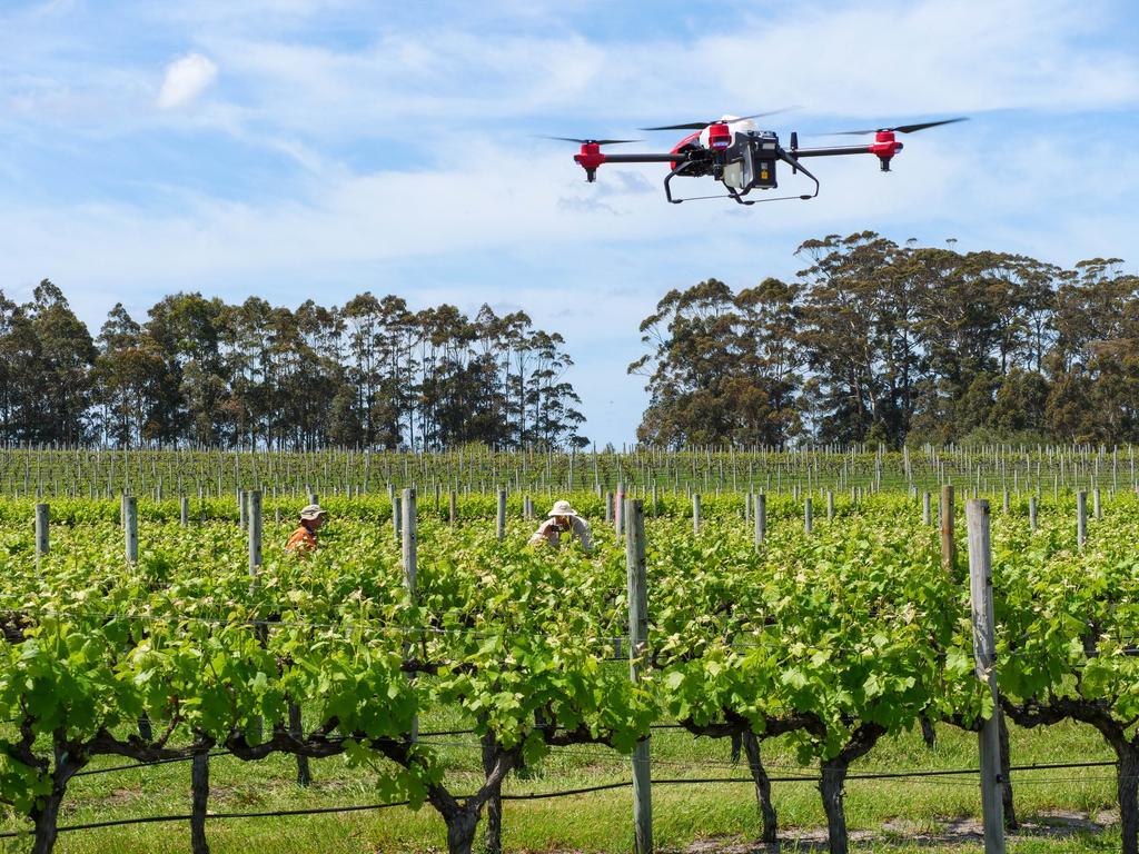 Các nhà nghiên cứu đưa ra đánh giá về nông nghiệp bền vững - Ảnh 3.
