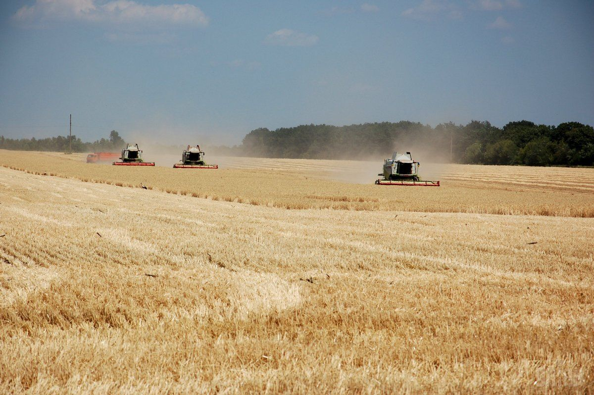 Các nhà nghiên cứu đưa ra đánh giá về nông nghiệp bền vững - Ảnh 2.