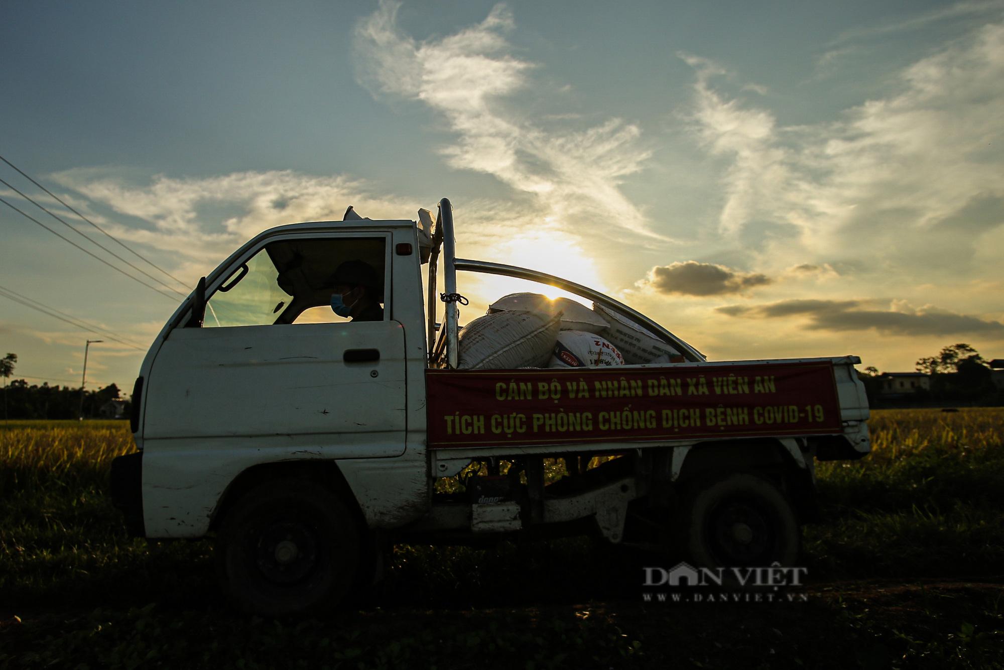 Hình ảnh chiến sĩ công an lội ruộng, ăn cơm vội để thu hoạch lúa giúp 141 hộ ở vùng cách ly y tế - Ảnh 10.