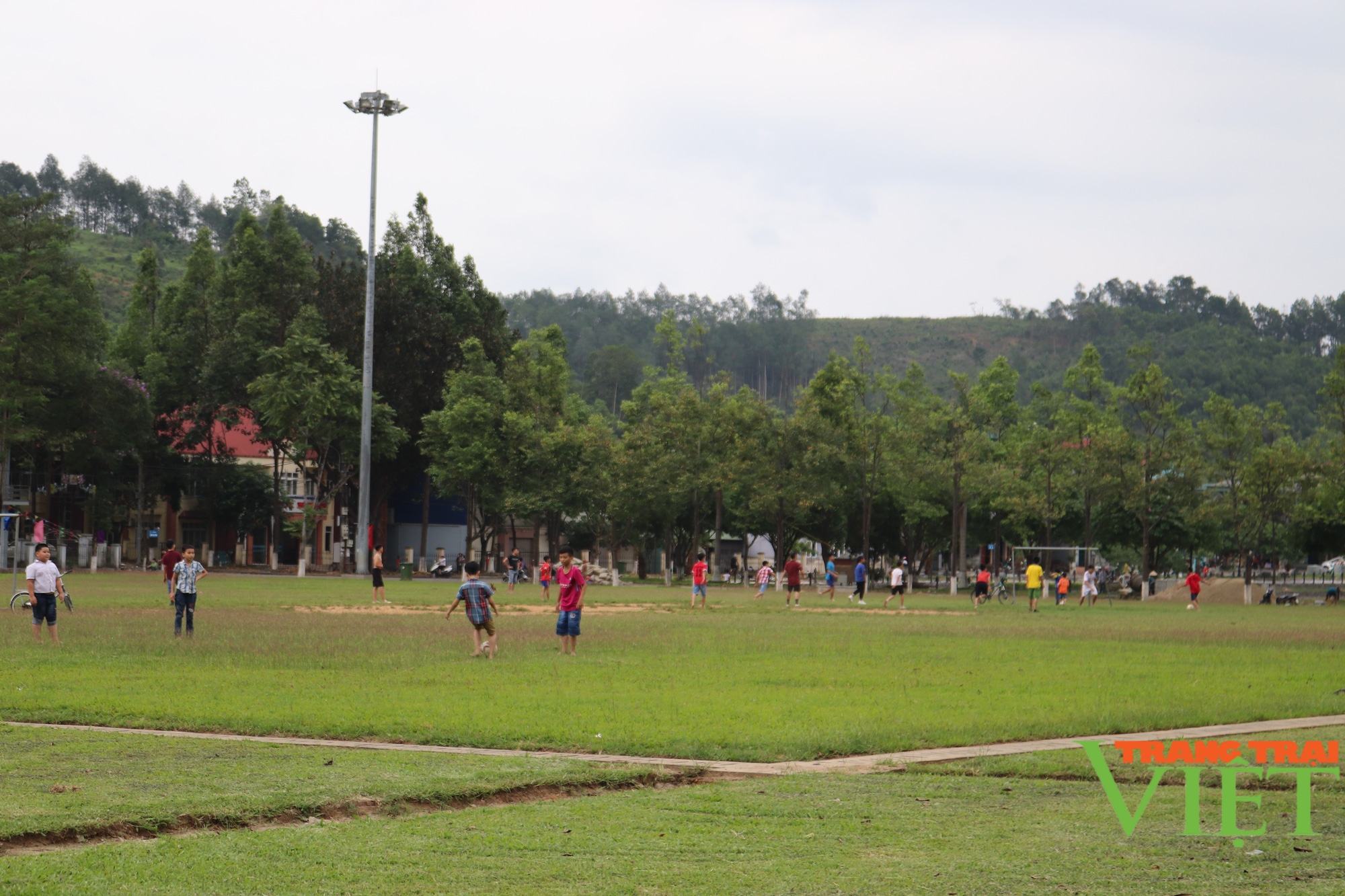 Lào Cai: Cho phép hoạt động trở lại phòng tập gym, yoga, thể dục, thể thao... - Ảnh 1.
