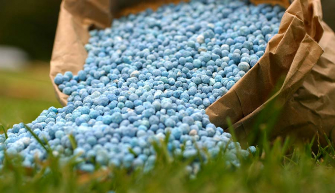 8 tháng nhập khẩu hơn 3 triệu tấn phân bón - Ảnh 1.