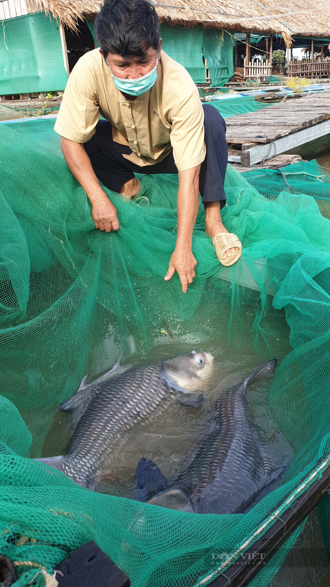 Người đàn ông làm giàu từ việc nuôi cá quý hiếm kết hợp với làm du lịch cộng đồng - Ảnh 2.