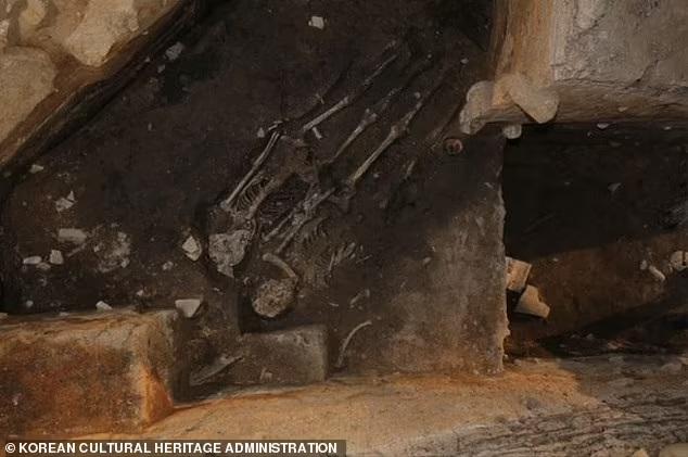 Hài cốt thiếu nữ trẻ chôn dưới cung điện cổ ở Hàn Quốc hé lộ tội ác kinh hoàng của vua chúa thời xưa - Ảnh 2.