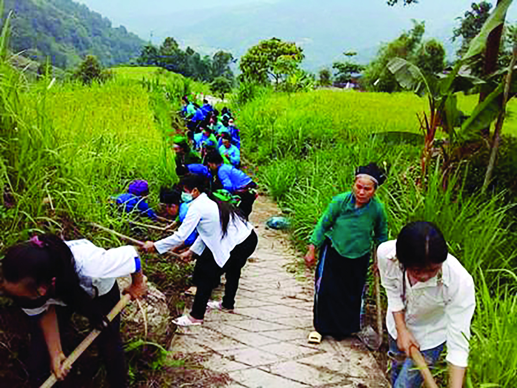 """Phụ nữ Hà Giang với phong trào """"môi trường xanh"""" - Ảnh 2."""