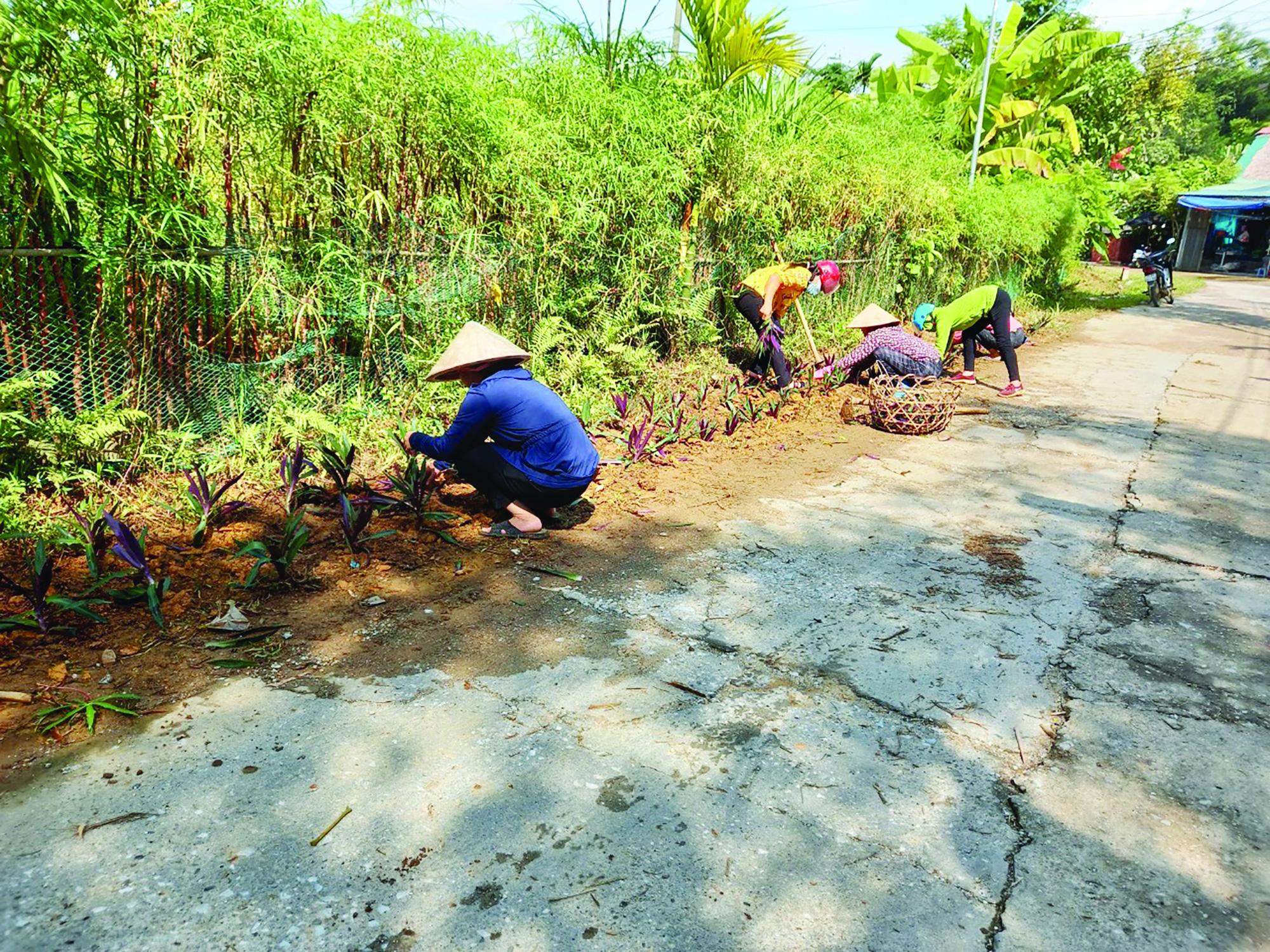 """Phụ nữ Hà Giang với phong trào """"môi trường xanh"""" - Ảnh 1."""
