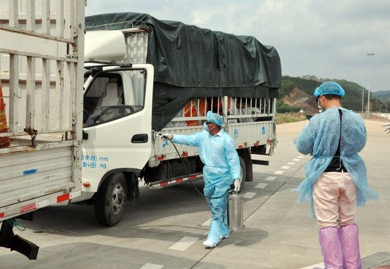 Thấy gì qua vụ phát hiện virus SARS-CoV-2 trên bao bì thanh long xuất khẩu? - Ảnh 1.