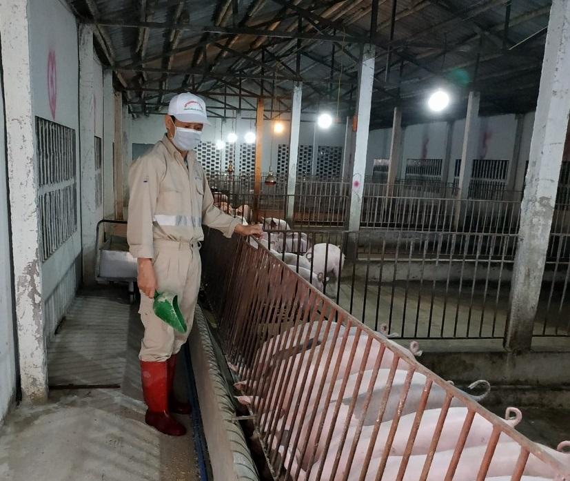 Nghịch lý: Có thế mạnh nông nghiệp nhưng Việt Nam vẫn chi 3 tỷ USD nhập khẩu thức ăn chăn nuôi - Ảnh 1.
