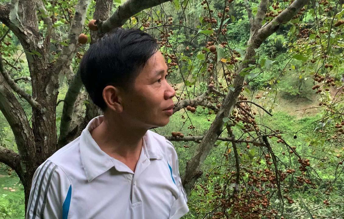 """Kỹ sư nông nghiệp người Tày lên núi chinh phục """"vùng đất khó"""" - Ảnh 6."""