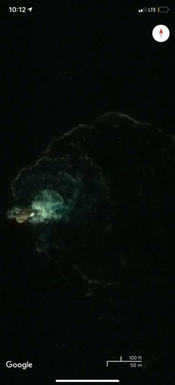 Dân tình sửng sốt khi phát hiện thấy quái vật Kraken trên Google Maps - Ảnh 1.