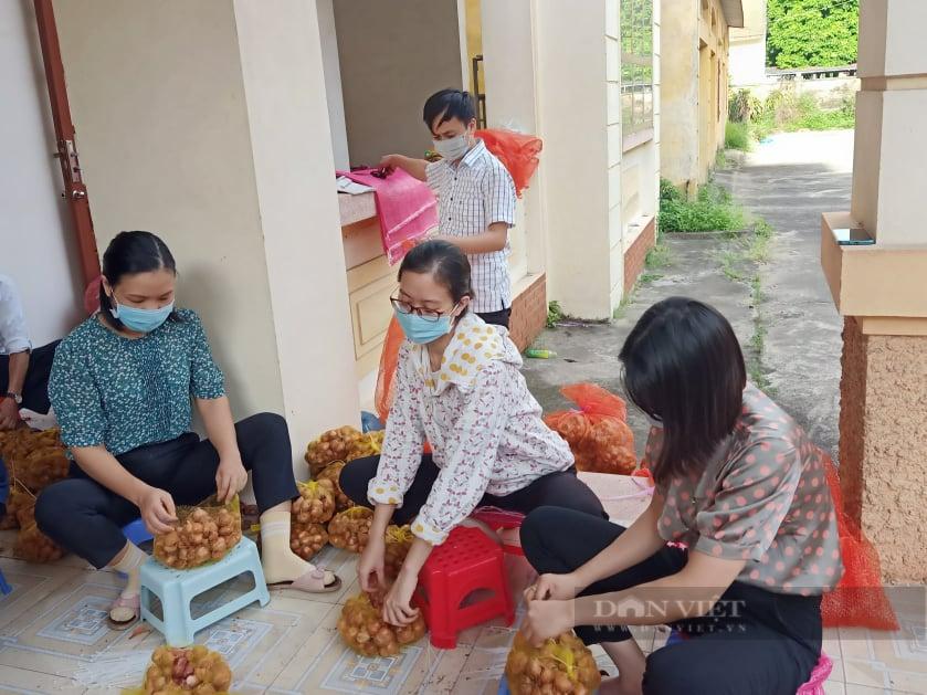 Hải Dương: Hàng chục tấn nông sản được Hội nông dân chung tay tiêu thụ vào thị trường Hà Nội - Ảnh 3.