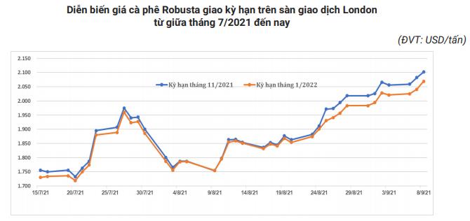 Giá xuất khẩu cà phê của Việt Nam sẽ còn tăng? - Ảnh 3.