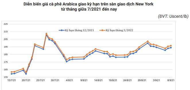 Giá xuất khẩu cà phê của Việt Nam sẽ còn tăng? - Ảnh 4.