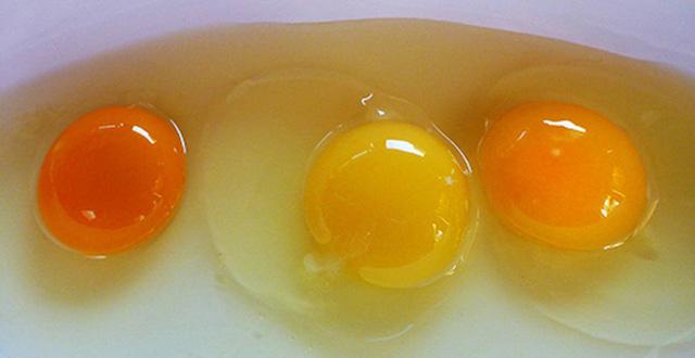 Thực hư thông tin lòng đỏ trứng gà càng sẫm màu thì ăn càng bổ? - Ảnh 1.