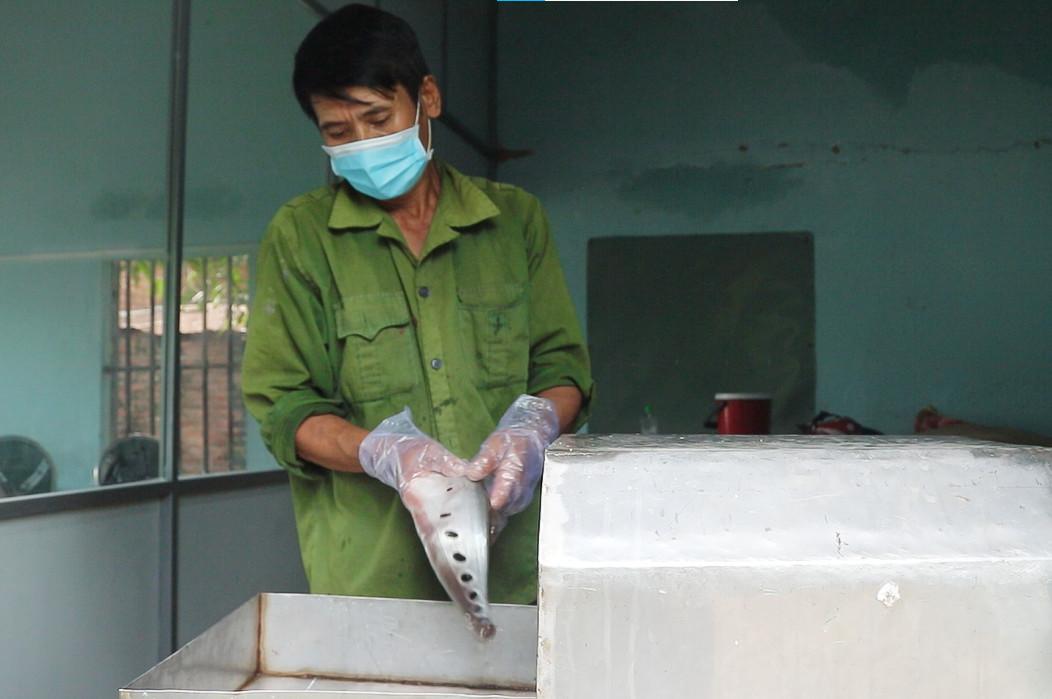 Gia Lai: Người dân thu hàng trăm triệu đồng nhờ nuôi loại dáng điệu, mỏng lép - Ảnh 5.