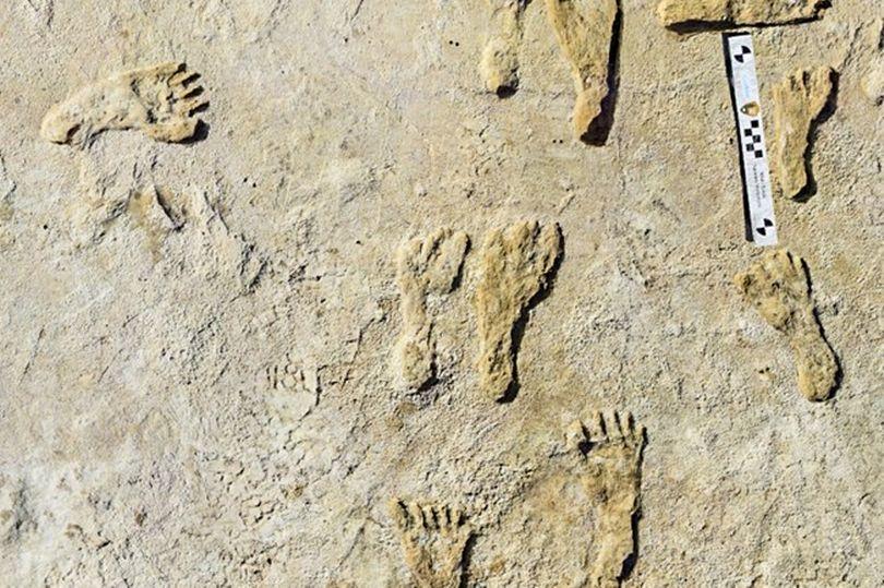 Phát hiện dấu chân kỳ lạ có liên kết với loài người thời cổ đại - Ảnh 1.