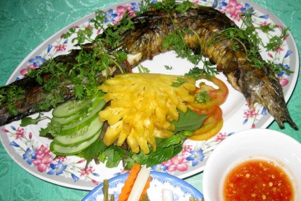 Loài cá đặc sản được ví bổ như nhân sâm, có tác dụng bổ thận tráng dương giá nửa triệu đồng/kg - Ảnh 2.