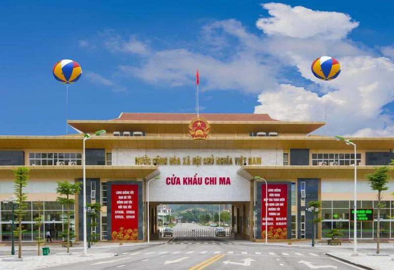 Chính phủ đồng ý nhập khẩu dược liệu qua cửa khẩu Chi Ma (Lạng Sơn) - Ảnh 1.