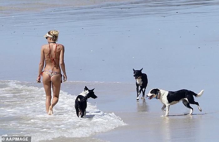 """Australia: Đếm ngược thời gian kích hoạt """"lộ trình tự do"""" với các """"chân dài bikini sexy"""" lại tràn xuống bãi biển - Ảnh 7."""