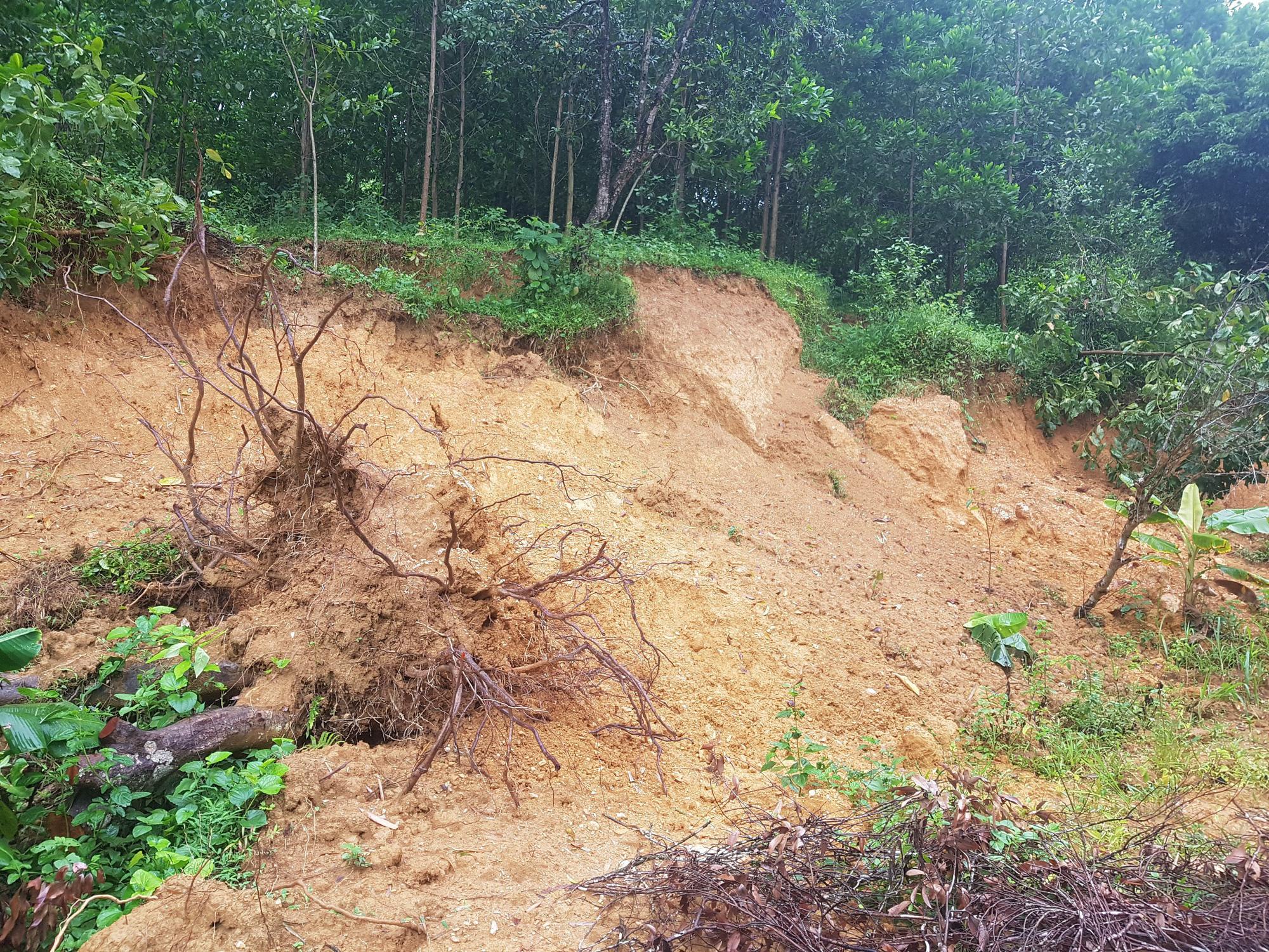 """Đồi Vó Nước """"nứt toác"""" vì mưa lớn, Ninh Bình di dời khẩn cấp nhiều hộ dân - Ảnh 4."""