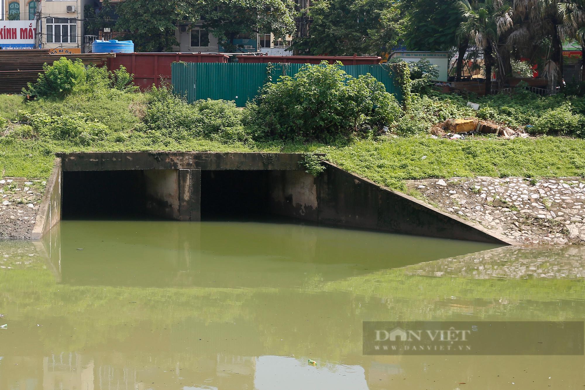 Vẻ đẹp khác lạ của con sông ô nhiễm nhất Hà Nội sau khi đổi màu nước - Ảnh 3.