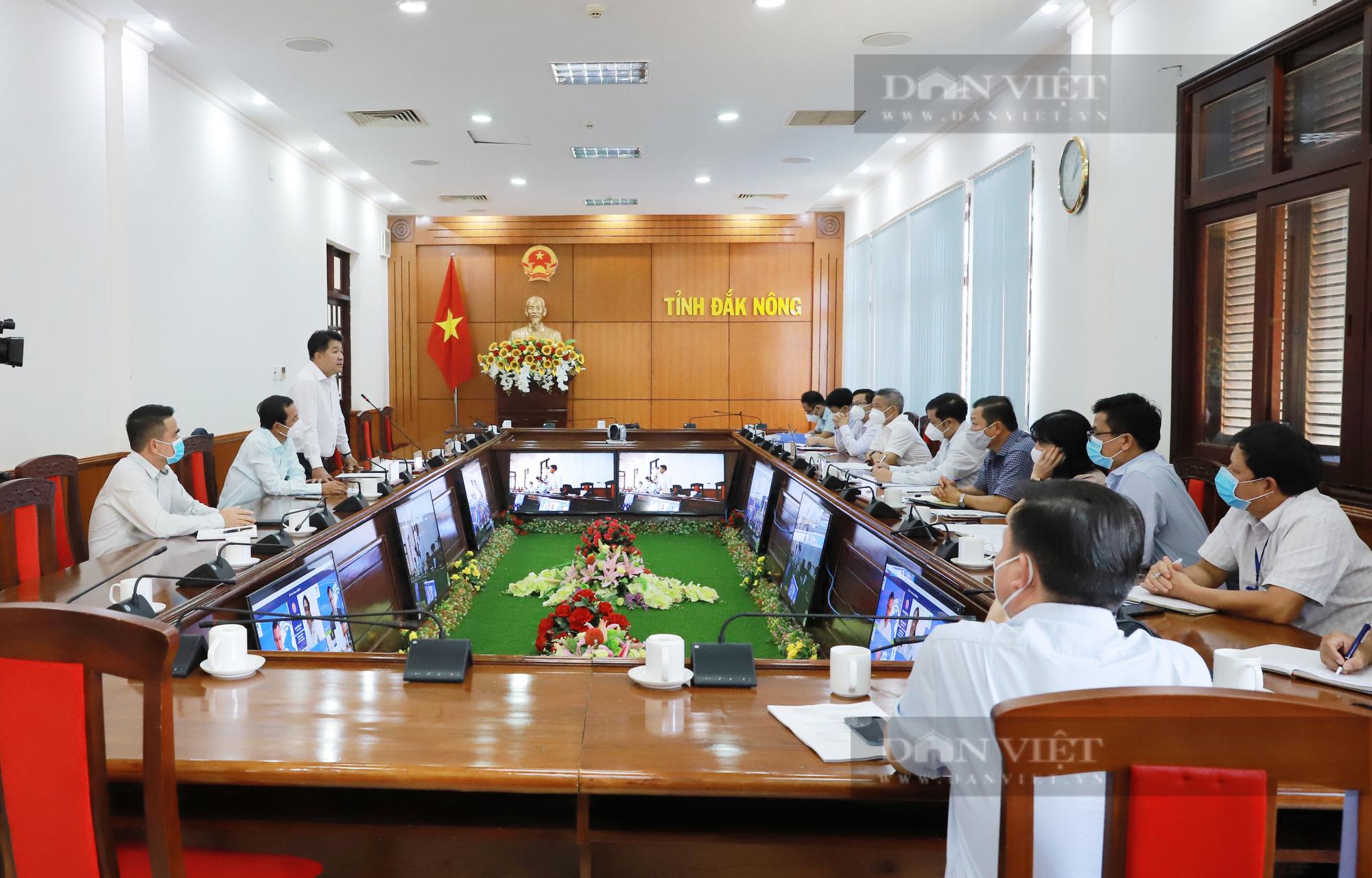 2 tập đoàn lớn nào chuẩn bị rót hàng triệu USD vào chăn nuôi tại Đắk Nông? - Ảnh 1.