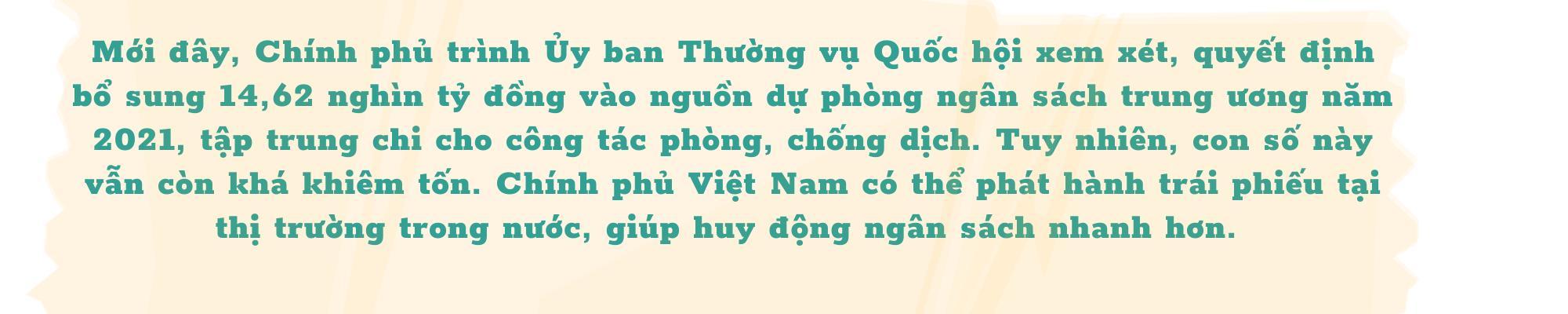 """Kinh tế trưởng ADB: Việt Nam đang bảo vệ """"túi tiền"""" ngân sách hơn là bảo toàn động lực tăng trưởng - Ảnh 6."""