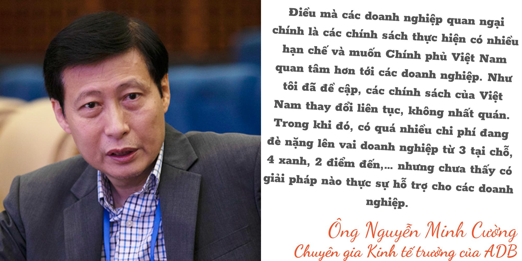 """Kinh tế trưởng ADB: Việt Nam đang bảo vệ """"túi tiền"""" ngân sách hơn là bảo toàn động lực tăng trưởng - Ảnh 13."""