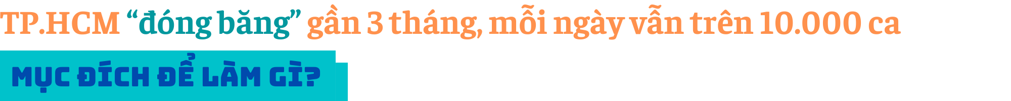 """Kinh tế trưởng ADB: Việt Nam đang bảo vệ """"túi tiền"""" ngân sách hơn là bảo toàn động lực tăng trưởng - Ảnh 2."""