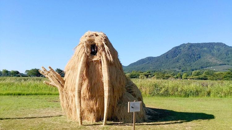 Ảnh: Nông dân Nhật Bản tạo ra các công trình nghệ thuật từ rơm rạ - Ảnh 3.