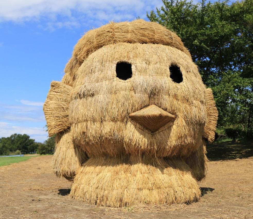 Ảnh: Nông dân Nhật Bản tạo ra các công trình nghệ thuật từ rơm rạ - Ảnh 5.