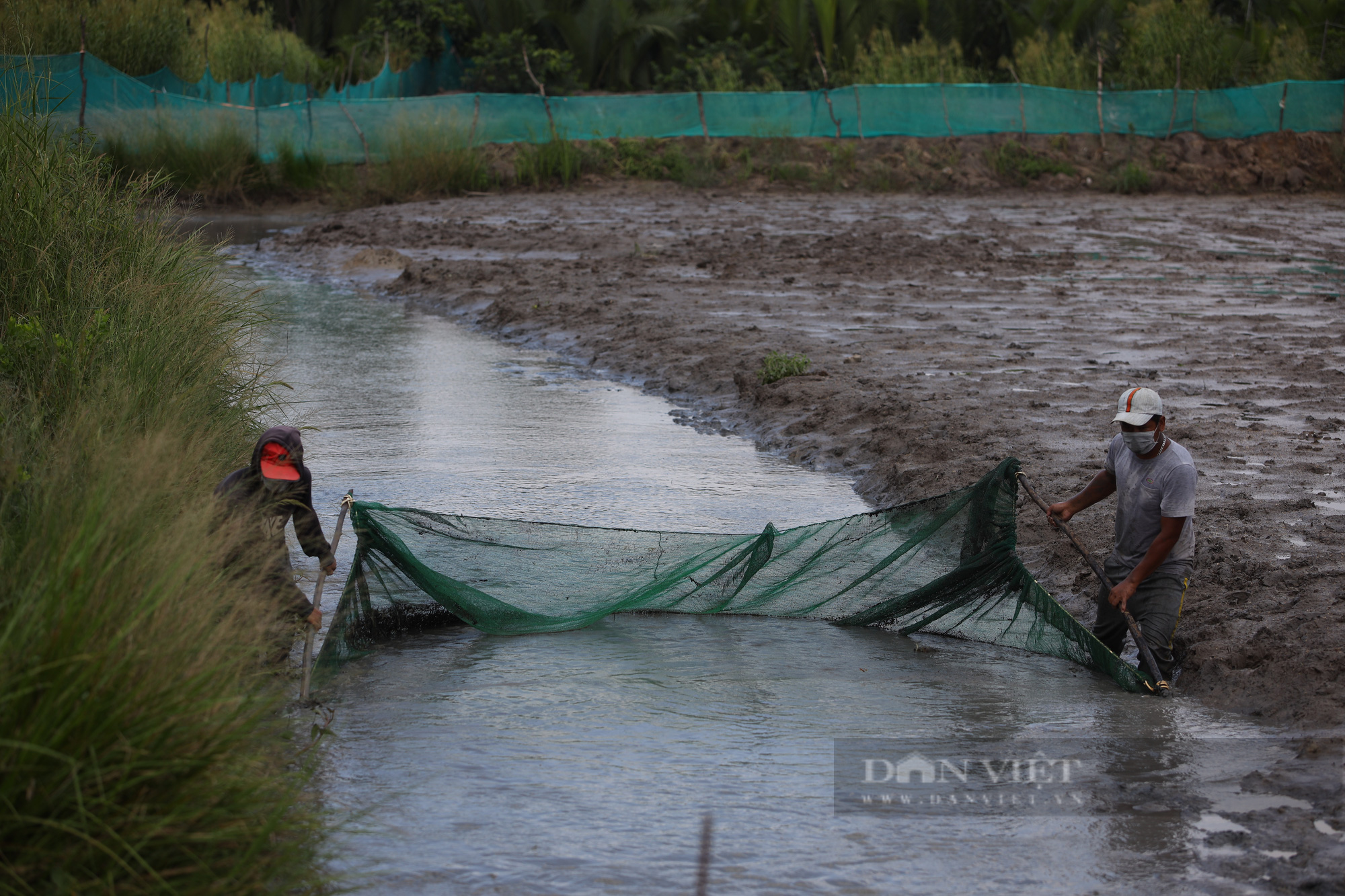 Ảnh: Người dân lao động mò cua, bắt cá lay lắt sống qua ngày tại TP.HCM - Ảnh 1.
