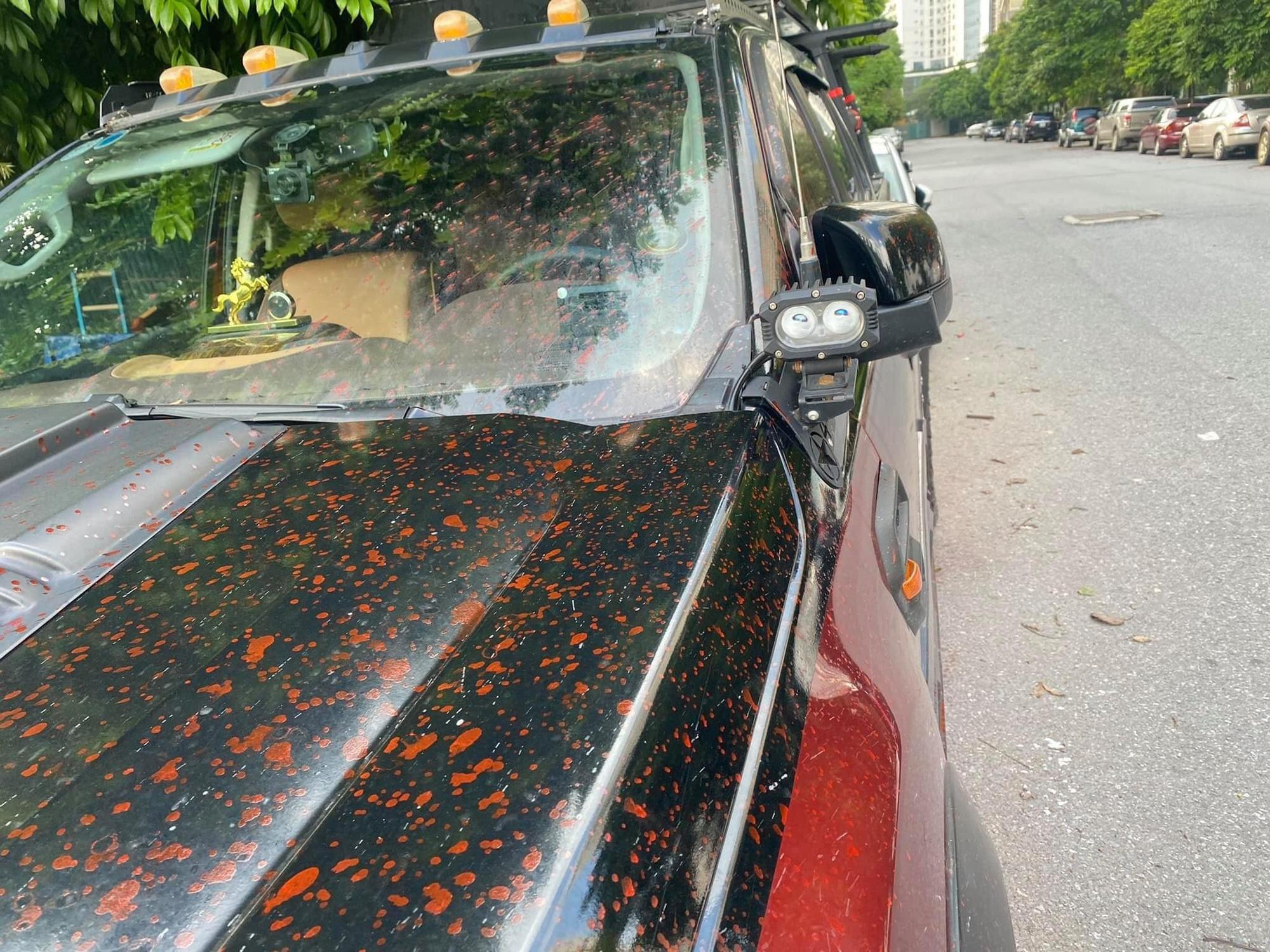 Hình ảnh hàng loạt xe ô tô bị tạt sơn ở Hà Nội - Ảnh 5.