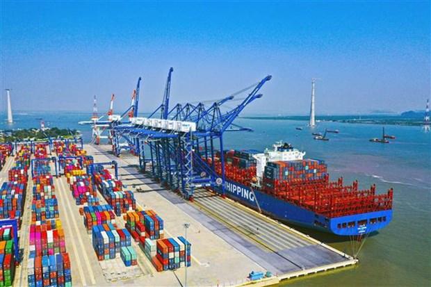 Cước vận tải biển tăng cao, Bộ GTVT vào cuộc làm rõ - Ảnh 1.