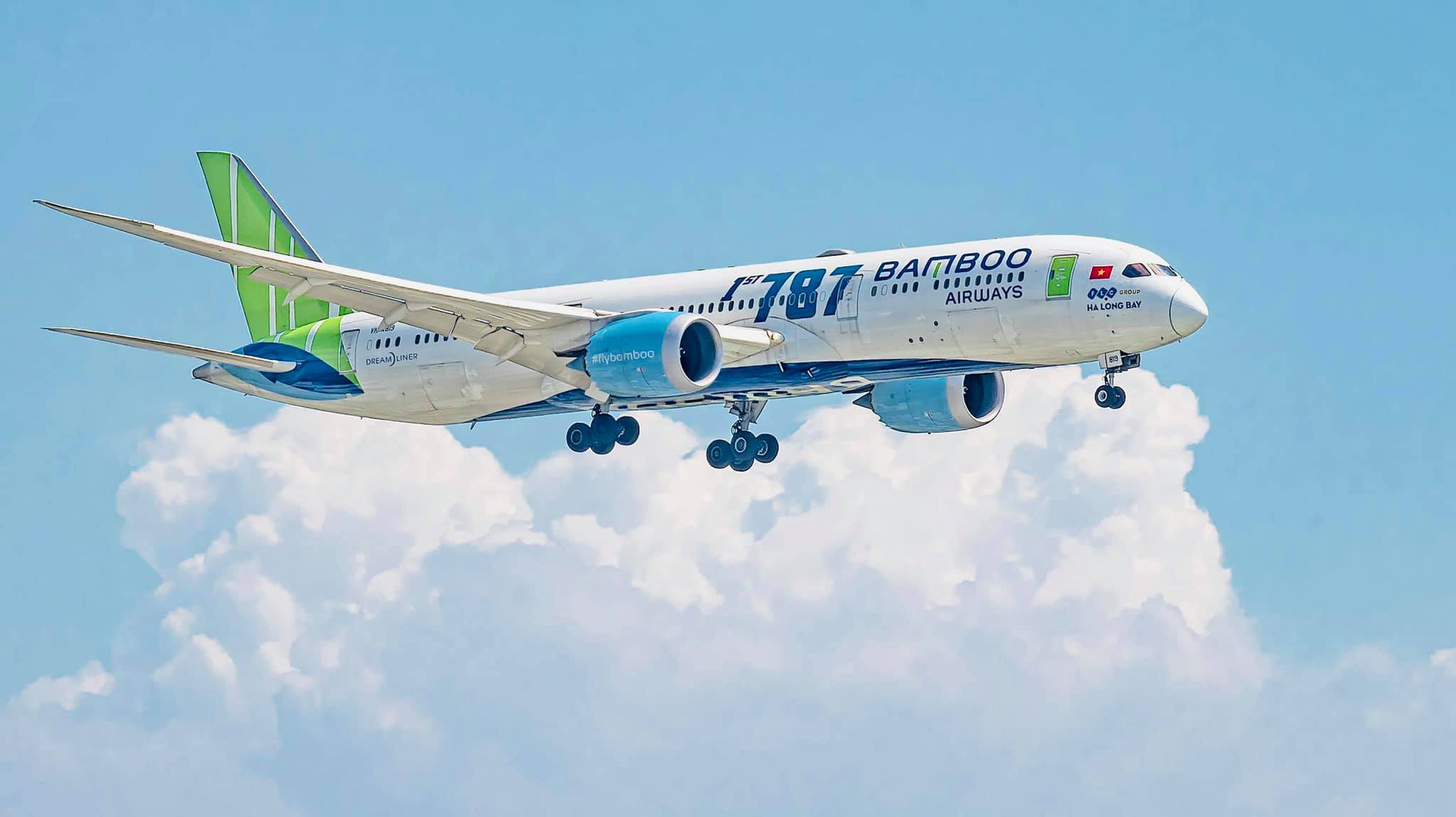 Kịch bản mở lại đường bay nội địa, hãng hàng không có thể bị tạm dừng bay - Ảnh 2.