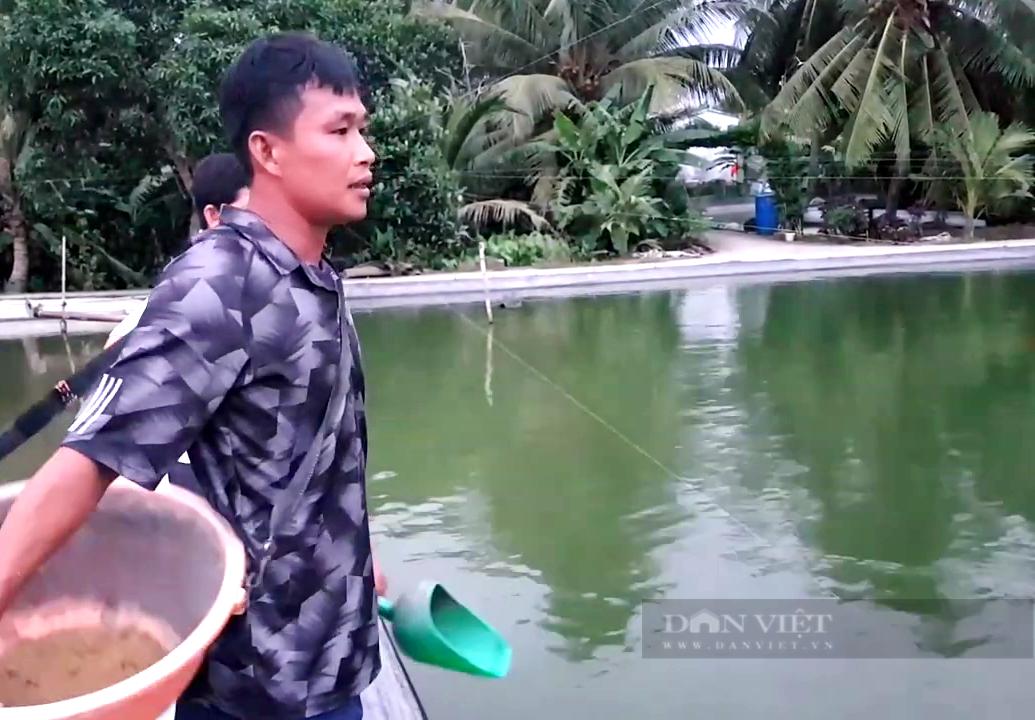"""Tiền Giang: Ương cá đặc sản đuôi đỏ như son, anh nông dân """"thủ phủ trái cây"""" thu tiền tỷ mỗi năm - Ảnh 2."""