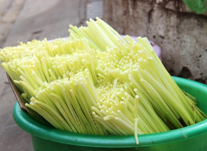 Những loại rau mọc hoang xưa chỉ coi là cỏ dại nay thành đặc sản hiên ngang trên bàn tiệc hạng sang ở miền Tây - Ảnh 4.